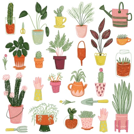 plantaspattern